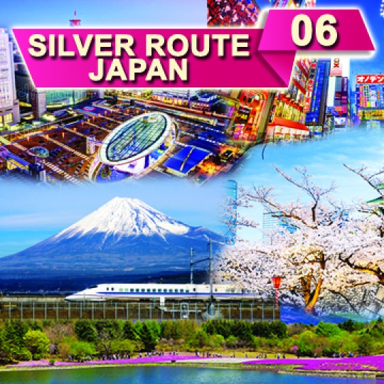 06 DAYS 05 NIGHTS SILVER ROUTE JAPAN TOUR